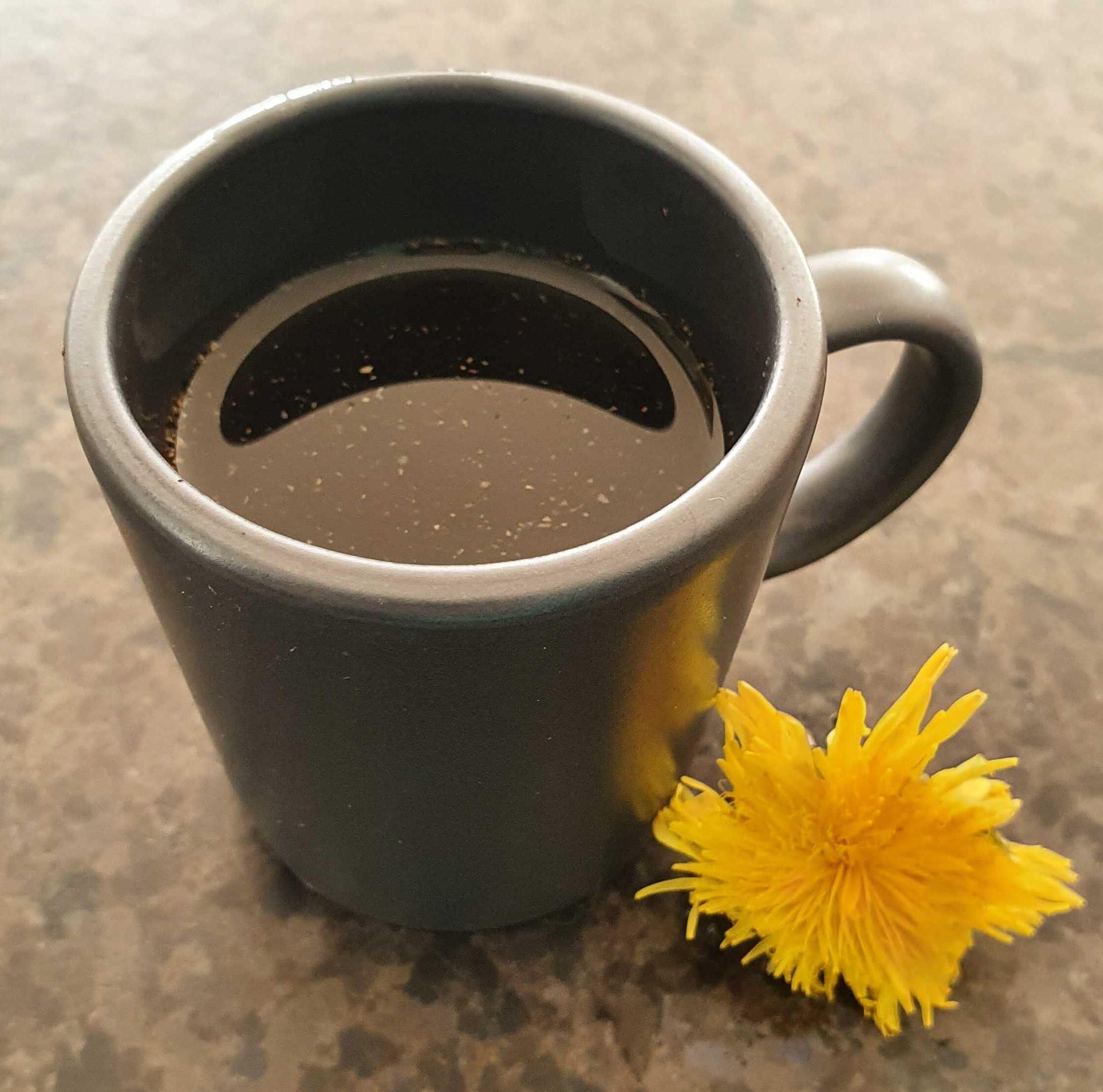 café pissenlit