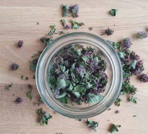 aromates séchés